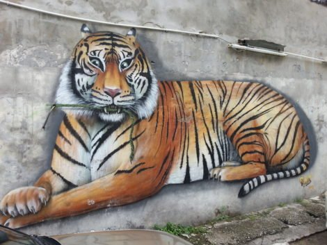 'Tiger Mural' by Colour Fighter