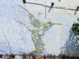 Humming bird mural in Ipoh
